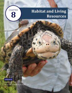 thumbnail of 5 Coastal Bend Bays Plan 2nd Ed – Habitat and Living Resources