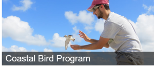 Coastal Bird Program Left